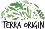 Terra Origin